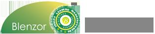 Blenzor India Logo